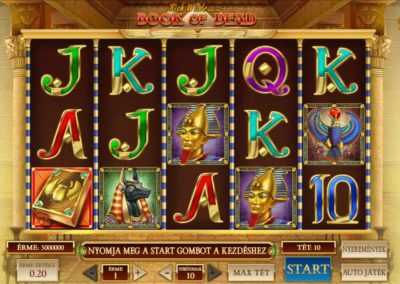 book of dead slot game play'n go